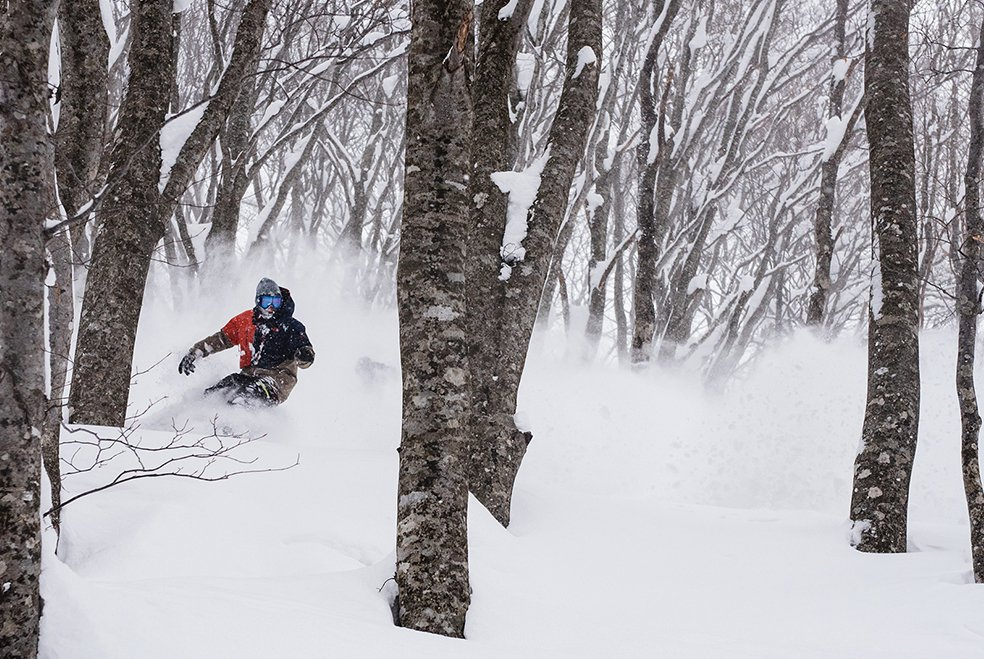 Freeride Snowboard